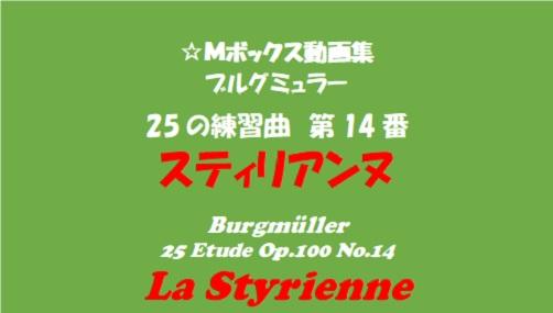ブルグミューラー25-14スティリアンヌ