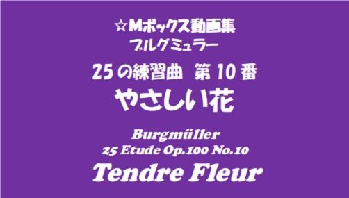 ブルグミューラー25-10優しい花猟
