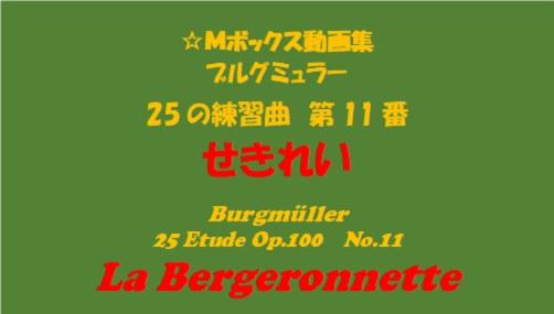 ブルグミューラー25-11せきれい