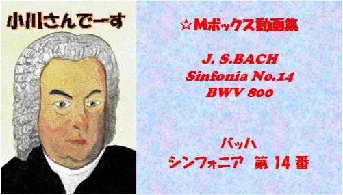 bachシンフォニア14大