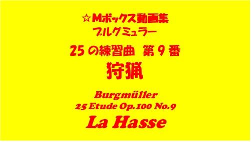 ブルグミューラー25-9狩猟
