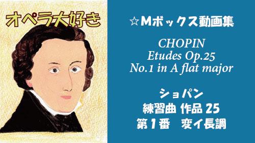 ショパン 練習曲 Op.25-1
