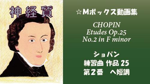 ショパン 練習曲 Op.25-2