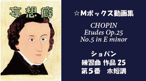 ショパン 練習曲 Op.25-5