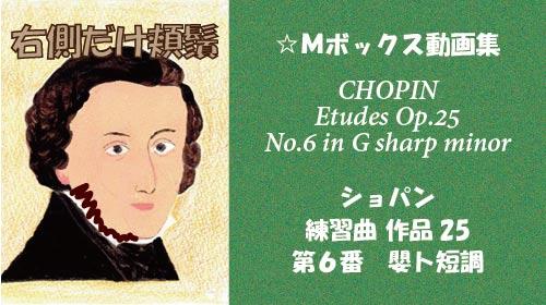 ショパン 練習曲 Op.25-6