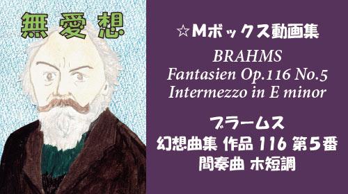 ブラームス 幻想曲集 第5番 間奏曲 Op.116-5