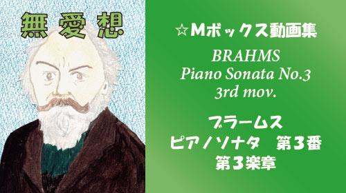 ブラームス ピアノソナタ第3番 第3楽章