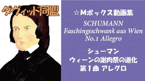 シューマン ウィーンの謝肉祭の道化 第1曲 アレグロ