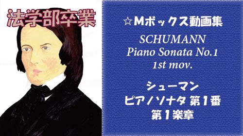シューマン ピアノソナタ 第1番 第1楽章
