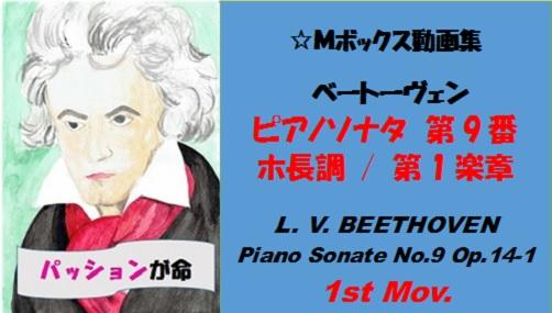ベートーヴェンピアノソナタ第9番第1楽章