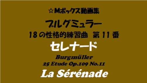 ブルグミューラー18-11セレナード