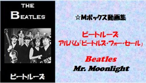 ビートルーズ・フォー・セール_#6_Mr. Moonlight