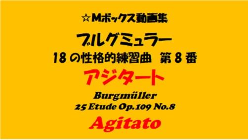 ブルグミューラー18-8アジタート