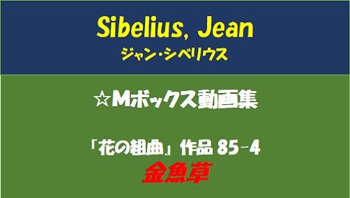シベリウス 金魚草